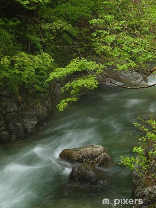 Fototapeta winylowa Górski potok - Sporty na świeżym powietrzu