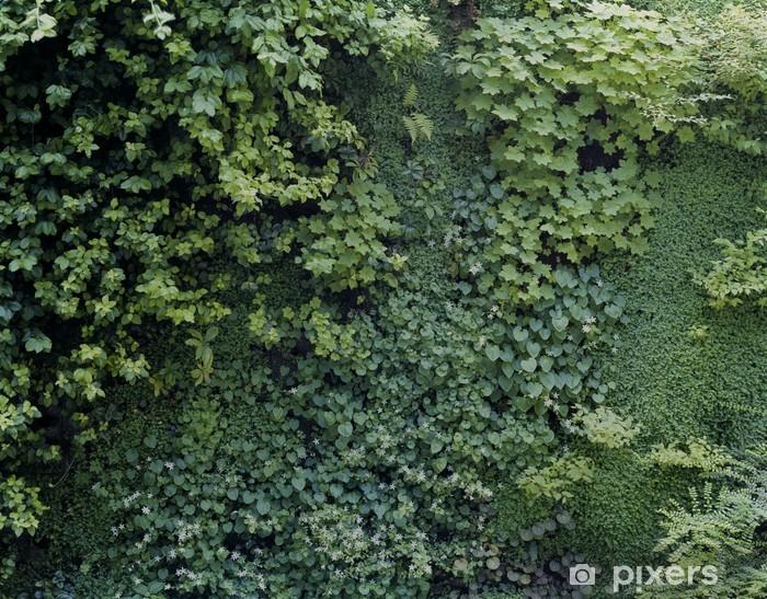 Papier Peint Mur Vegetal 01 Pixers Nous Vivons Pour Changer