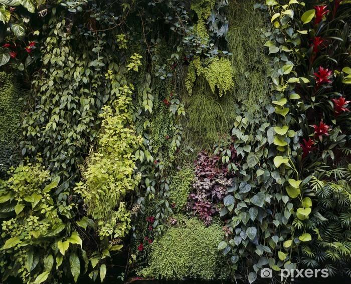 Papier Peint Mur Vegetal 02 Pixers Nous Vivons Pour Changer