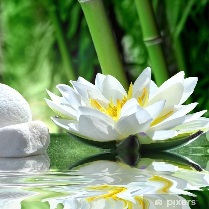 Fototapeta winylowa Lilia wodna - Bambusy
