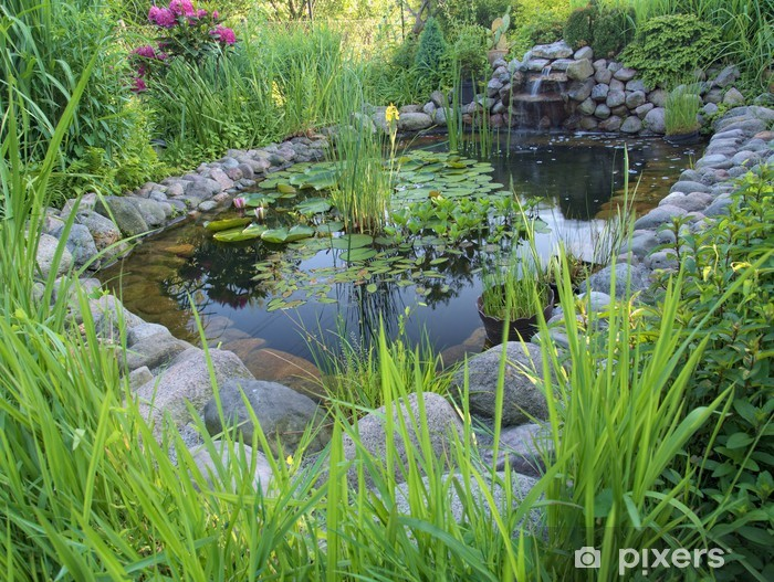 Laghetto Con Cascata Da Giardino : Carta da parati laghetto ornamentale con cascata in giardino