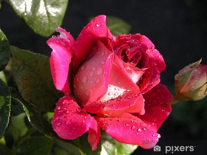 Papier peint vinyle Royal Rose - Thèmes
