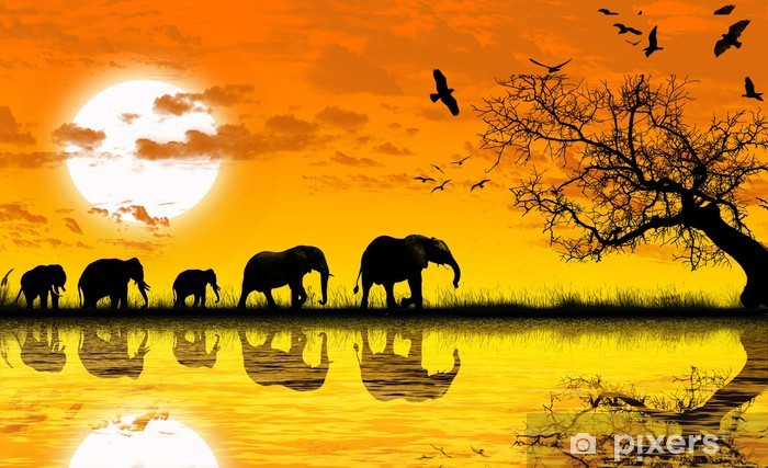 Fototapeta winylowa Afryka - Tematy