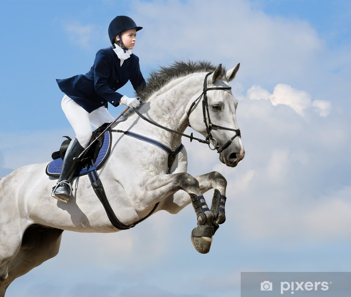 Mural de Parede em Vinil Equestrian jumper - young girl jumping with dapple-grey horse - Desportos Individuais