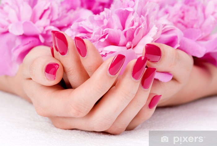 Woman cupped hands with manicure holding a pink flower Pixerstick Sticker -