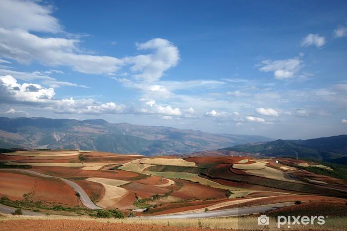 Fotomural Estándar Tierras de cultivo colorido en Dongchuan de china - Asia