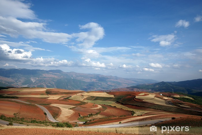 Colorful farmland in dongchuan of china Vinyl Wall Mural - Asia