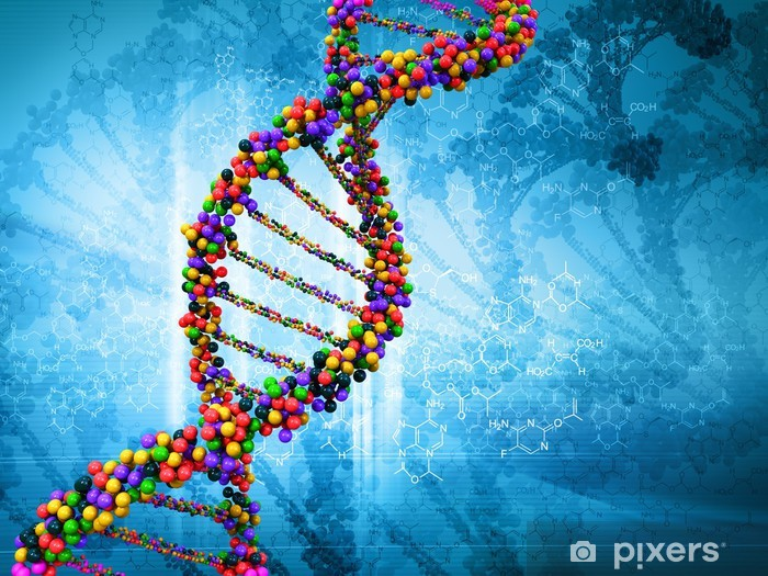 Digital illustration of a dna Vinyl Wall Mural - Health and Medicine