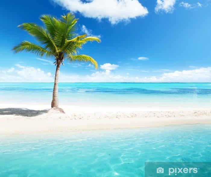 Fototapete Palmen Auf Der Insel • Pixers®
