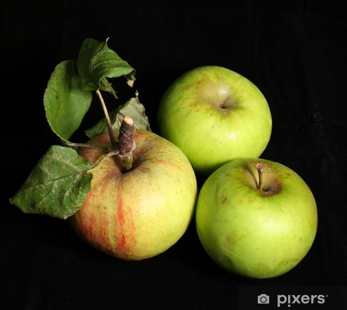 Plakat Pommes biologiques - Owoce