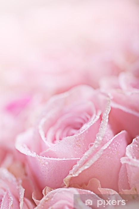 Naklejka Pixerstick Rosa Rosen mit Tautropfen - Kwiaty