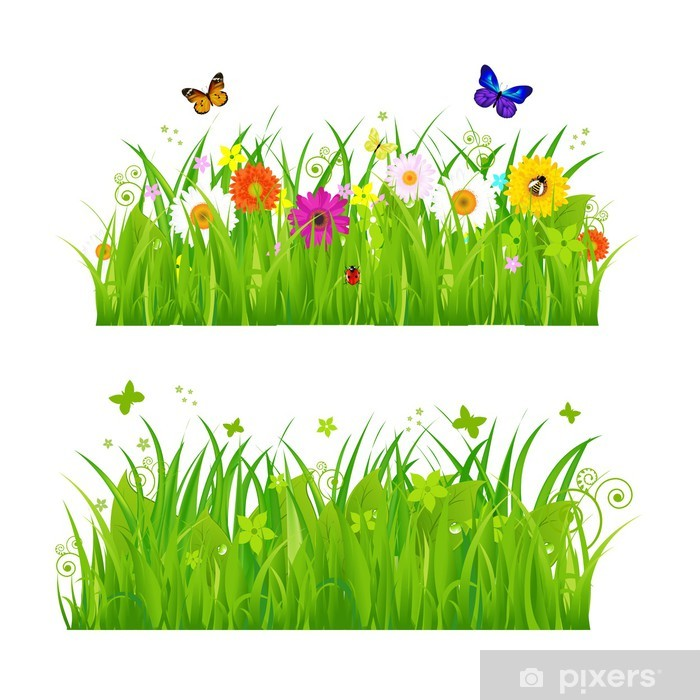 Green Grass With Flowers And Insects Vinyl Wall Mural - Wall decals