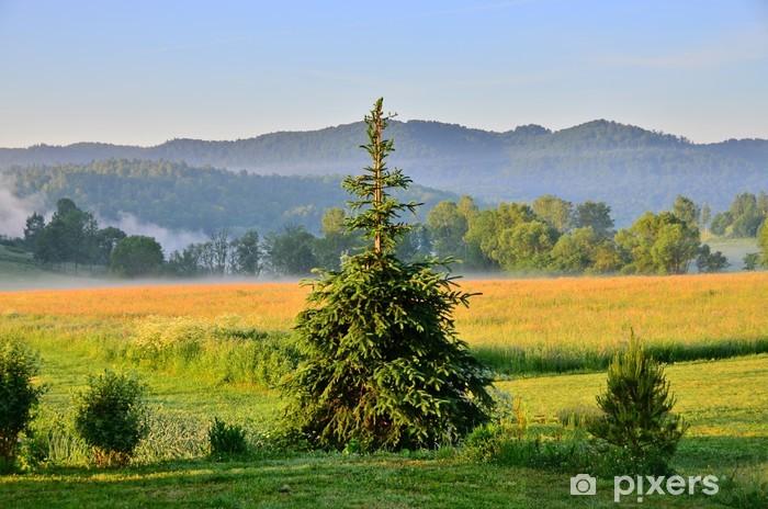 Fototapeta winylowa Mglisty poranek w górach (Bieszczady, Polska) - Tematy