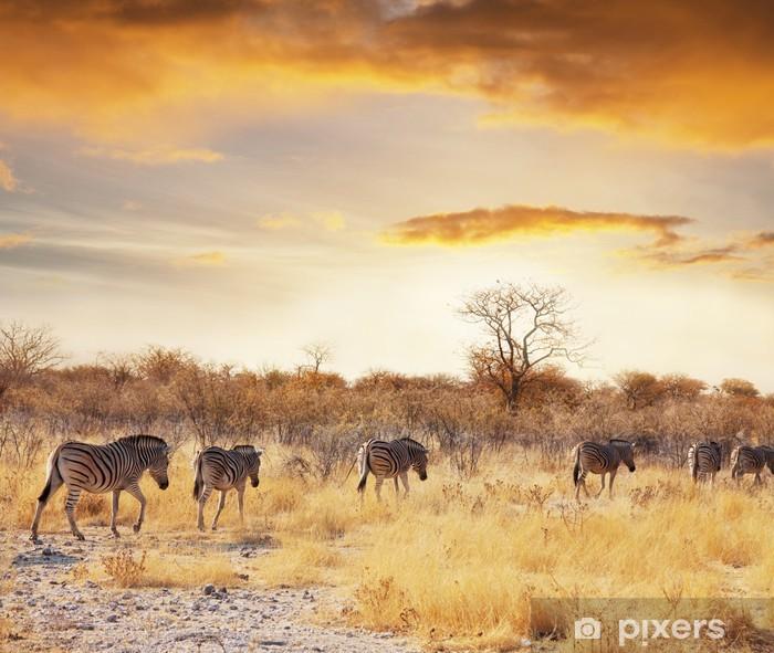 Naklejka Pixerstick Safari - Tematy