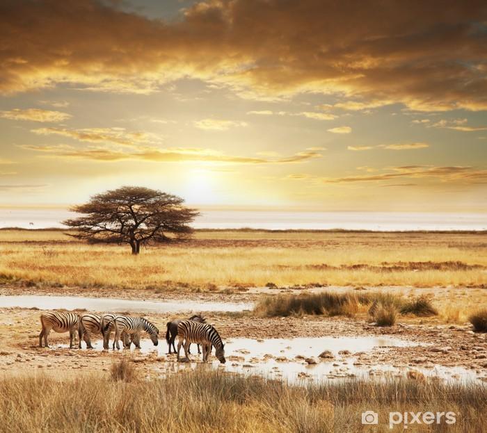 Fototapeta winylowa Safari - Tematy