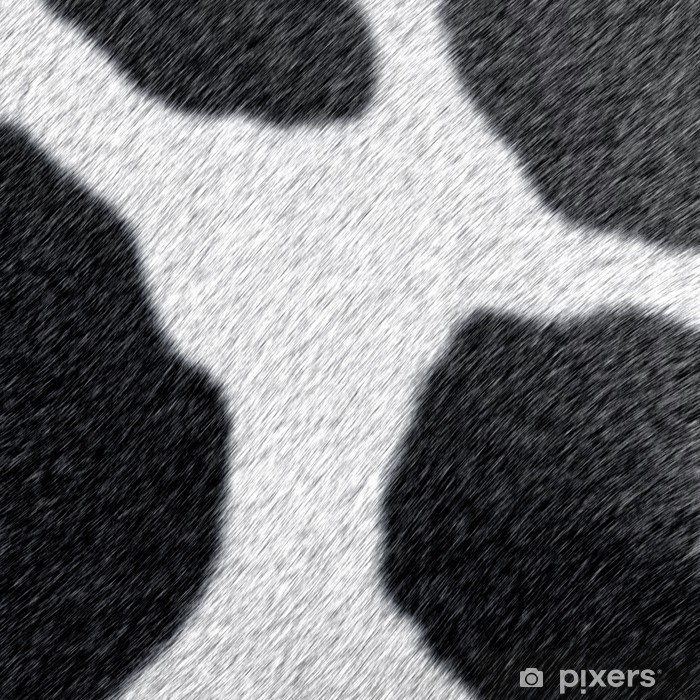 Vinylová fototapeta 毛皮 - Vinylová fototapeta
