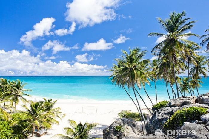 Fototapeta winylowa Bottom Bay, Barbados, Karaiby - Palmy