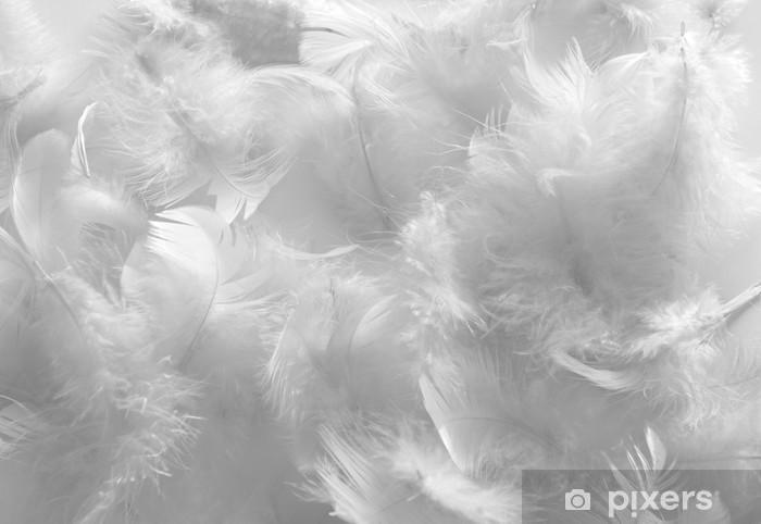 Papier peint vinyle Plumes blanches - Thèmes