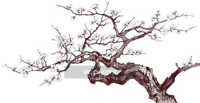 Cherry Tree Wall Decal - Styles