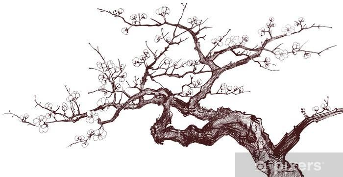 Cam ve Pencere Çıkartması Kiraz ağacı -