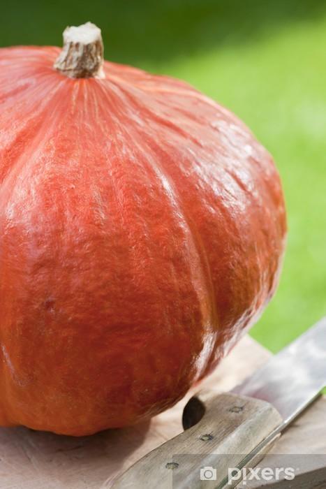 Vinilo Pixerstick Frischer Hokkaido Kürbis im Freien mit Messer - Comida