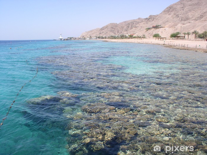 Vinilo Pixerstick Mar muerto de coral - Agua
