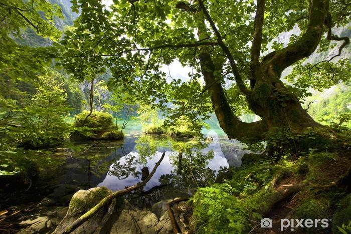 Naklejka Pixerstick Wiosna w górach - Tematy