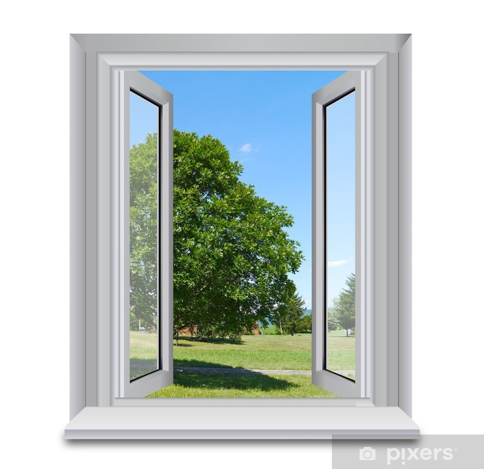 Fototapeta winylowa Drzewo na zewnątrz okna - Naklejki na ścianę