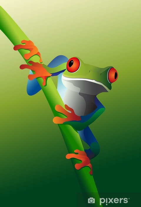 Red-Eyed Tree Frog on vine Pixerstick Sticker - Frogs