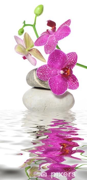 Afwasbaar Fotobehang Een tak orchidee - Thema's