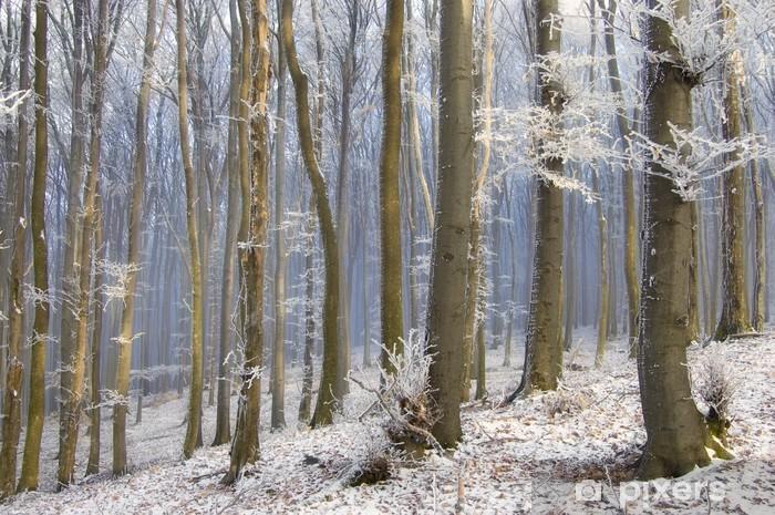Fototapeta winylowa Mgła między drzewami w pięknym lesie frozem w zimie - Pory roku