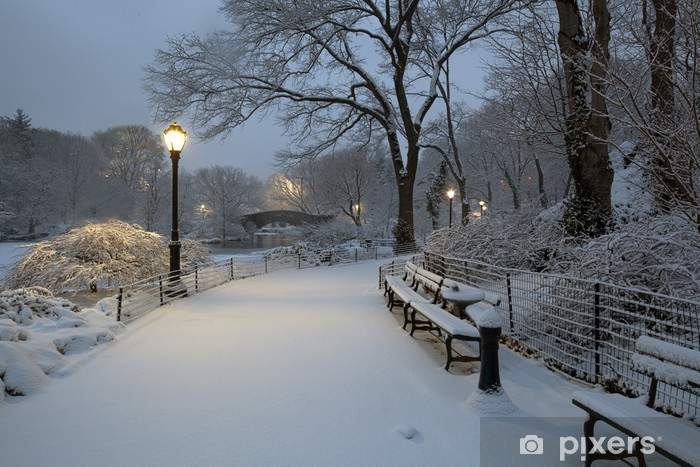 Central Park in snow storm Pixerstick Sticker - Themes