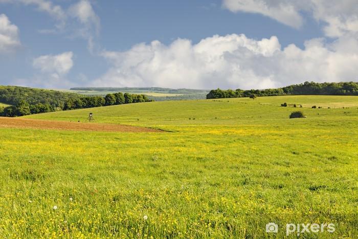 Naklejka Pixerstick Kwitnąca łąka na Rouhling - Pory roku