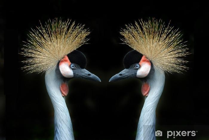 Naklejka Pixerstick Szary Cranes Koronowany - Sukces i osiągnięcia
