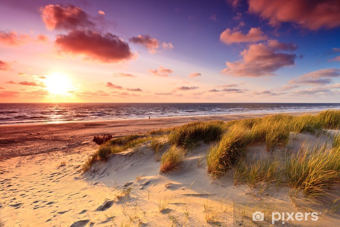 Seaside with sand dunes at sunset Pixerstick Sticker - Themes