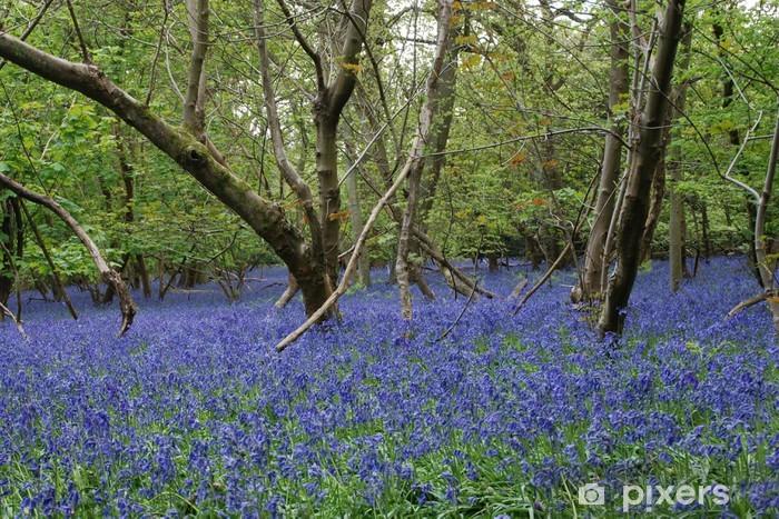 bluebells Table & Desk Veneer - Countryside