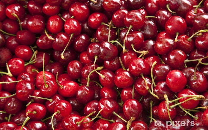 Cherries Vinyl Wall Mural - Meals
