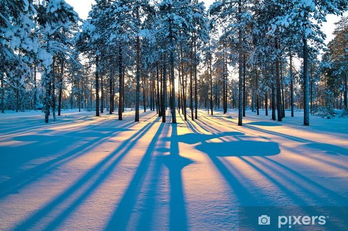 Vinyl Fotobehang Zonsondergang in een winters bos. - Thema's