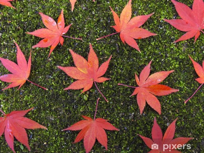 Naklejka Pixerstick Opadłych liści na mchu - Kwiaty