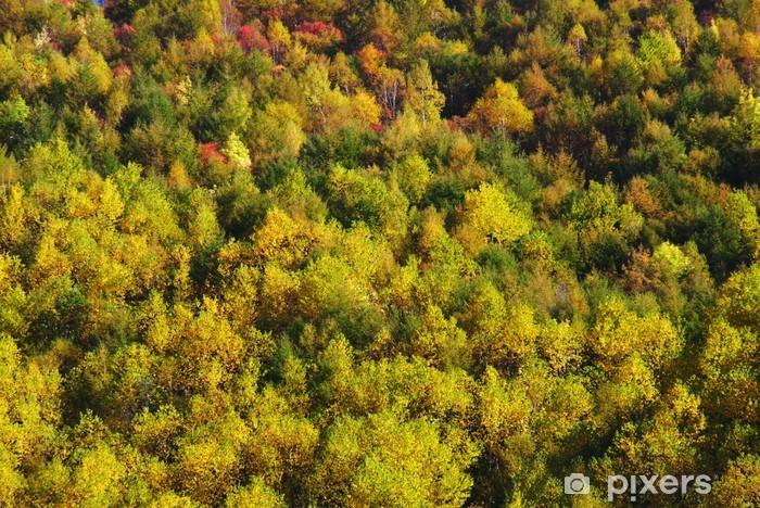 Sticker Pixerstick Les feuilles rouges - Nature