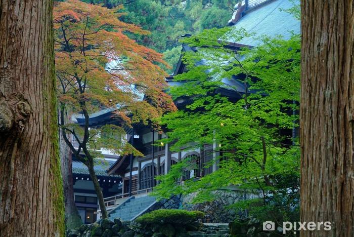 Fototapeta winylowa Eiheiji - Przyroda