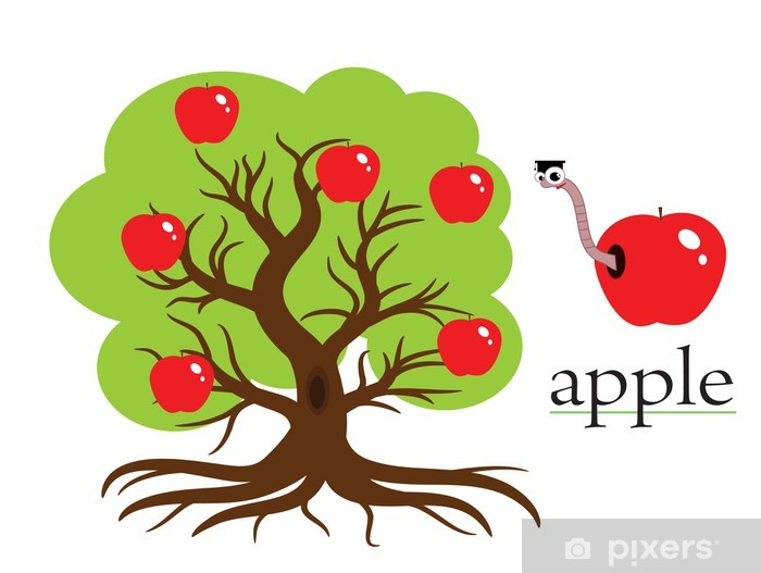 Vinyl-Fototapete Apple tree, vector. - Ausbildung