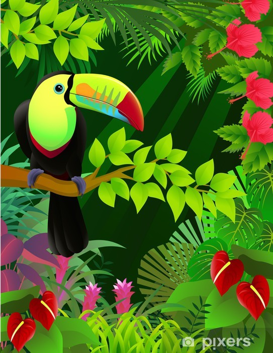 Vector Illustration Of Toucan In The Tropical Jungle Wall Mural Vinyl