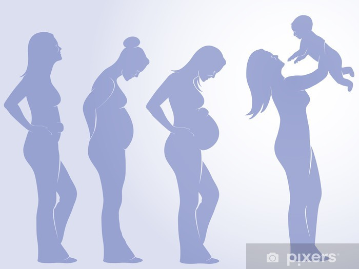 pregnancy Vinyl Wall Mural - Family Life