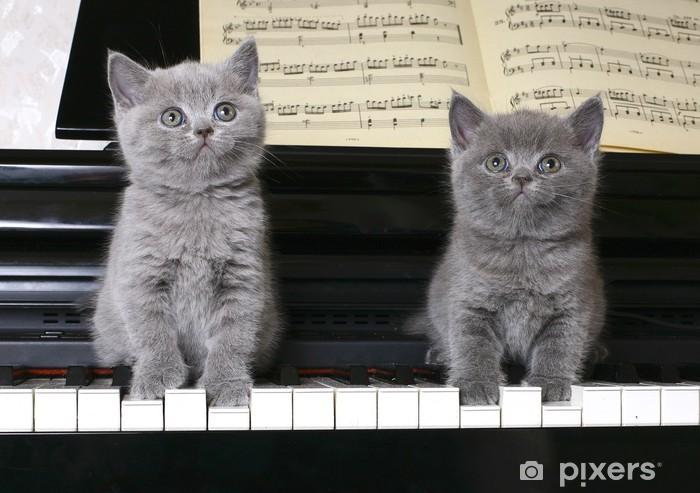 Naklejka Pixerstick Two kitten brytyjski na fortepianie - Ssaki