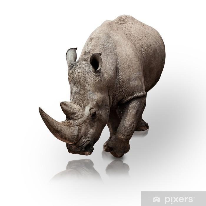 Pixerstick Sticker Rhinoceros - Zoogdieren