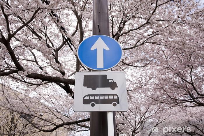 交通標識と桜 Vinyl Wall Mural - Culture