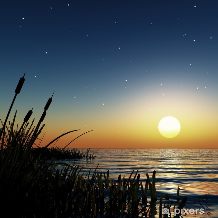 Mural de Parede em Vinil starry sunset - Céu