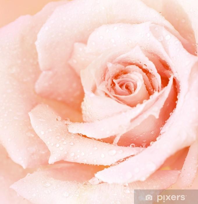 Afwasbaar Fotobehang Roze natte steeg achtergrond - Thema's