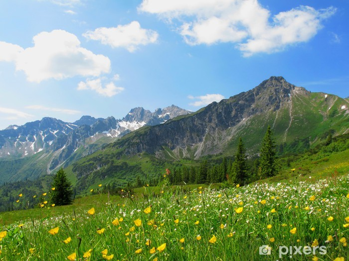 Blumenwiese im Hochgebirge Pixerstick Sticker - Meadows, fields and grasses
